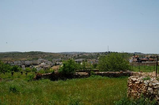 The Abu Hashem family land [Credit: EAPPI/H.O.Jonsson]