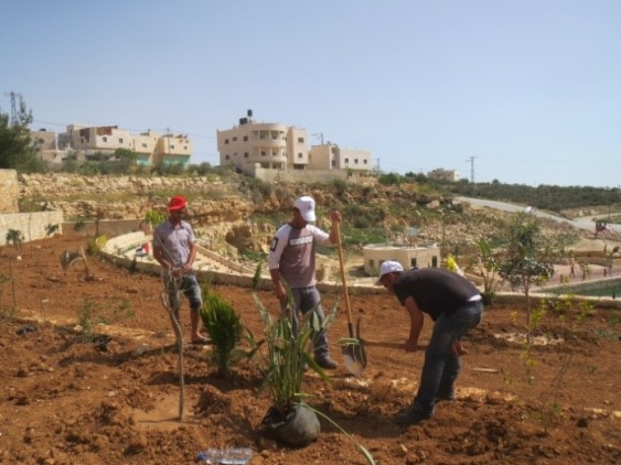 Palestinians planting trees at the amphitheatre. [Credit: EAPPI/T.Mansbridge]