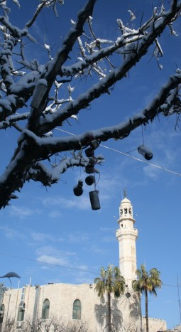 Tear gas canisters are used as decorations on trees in Manger Square over the Christmas period [Credit: M. Whitton]