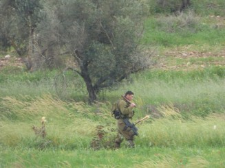 An IDF soldier removes the tree they have cut down [Credit: EAPPI/E.Pritchard]