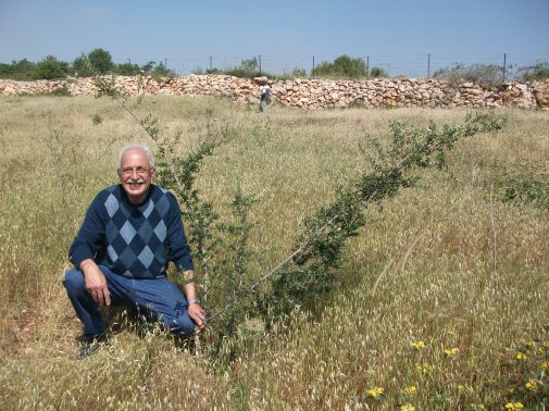 Nasser Khamir and his plot of land in Al-Makhrour. Credit EAPPI  ERStrachan