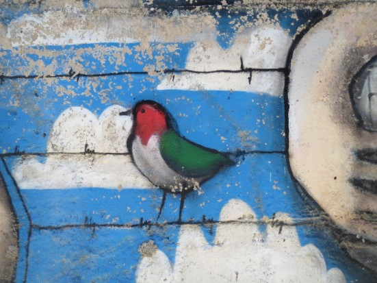 A Palestinian bird on an old part of the wall alongside Aida Refugee Camp