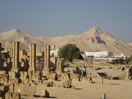 INSERT PHOTO - HISHAMS PALACE (LONG SHOT) 130116. Hishams Palace, Jericho, Jordan Valley, Occupied Palestinian Territory. Tourist attraction 5km north of Jericho. Photo EAPPI (P Longden)