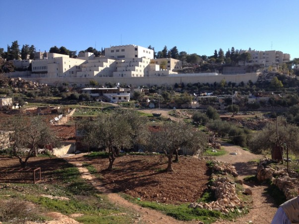Kiryat Arba buildings overlooking Palestinian houses in Wadi Al Hussein (Photo: EAPPI/Sabrina Tucci]