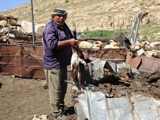 Photo 3 Khirbet Tana. Another victim of the 23rd March demolition. (photo EAPPI/A.Holmes)