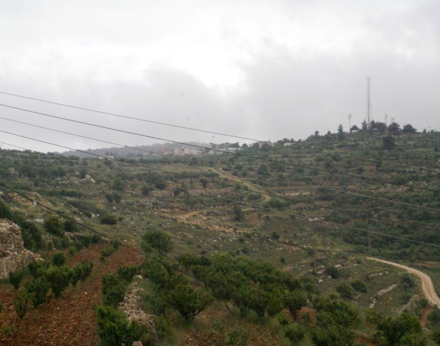 Beit Ummar's land with the red houses of an Israeli settlement in the distance. Palestinian construction on this land is forbidden Haywood