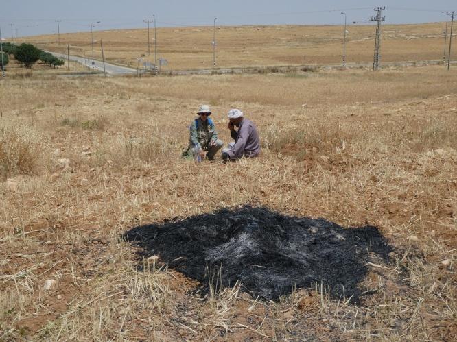 17.05.16 South Hebron Hills, Susiya, harvested stack of wheat burnt, Khalid Al Najar & M Kilely Photo EAPPI M Huff (s)
