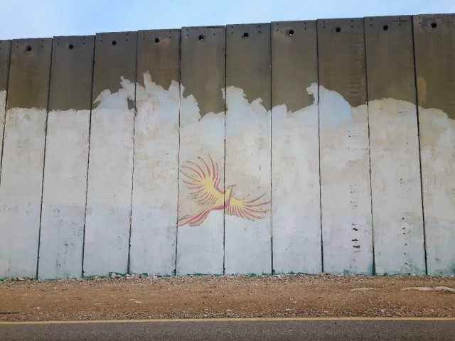 Graffiti of a dove on the separation barrier by Hani's house. Photo:EAPPI/John